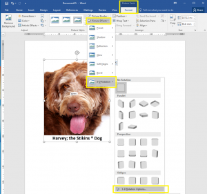 How to rotate images in Word, step one