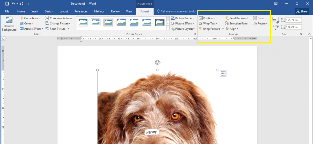 Where to find Word's Arrange Tools in the Format Tabs