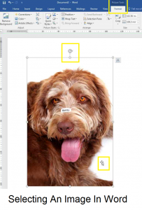Selecting an image in Word